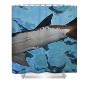 Shark Tail Shower Curtain