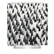 Sharp Wooden Pencils Shower Curtain