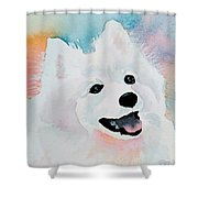 Shasta, A Prince Of A Dog Shower Curtain