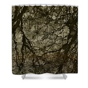 Shattered Forest Shower Curtain
