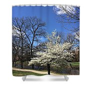 Shaw View Shower Curtain