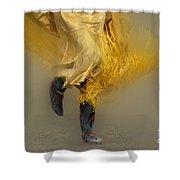 Pow Wow Shawl Dancer 9 Shower Curtain