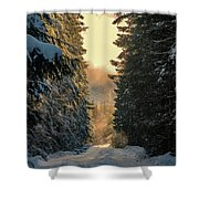 Shawnigan Winter Road Shower Curtain