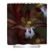 She Dwells In The Shadows Shower Curtain