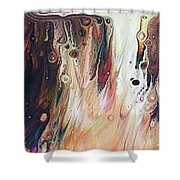 She Had A Soul On Fire, With A Level Head And 20/20 Vision... Shower Curtain