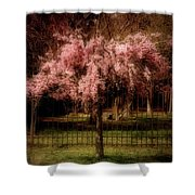 She Weeps - Ocean County Park Shower Curtain