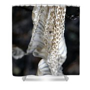Shed - Snake Skin Shower Curtain