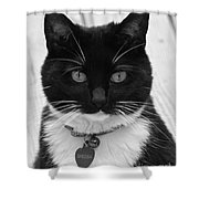 Sheeba In Black And White Shower Curtain