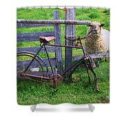 Sheep And Bicycle Shower Curtain