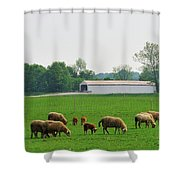 Sheep And Covered Bridge Shower Curtain
