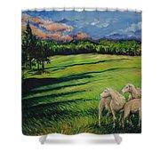 Sheep At Dusk Shower Curtain