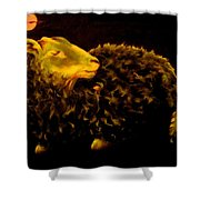 Sheep At Night Shower Curtain