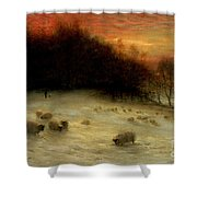 Sheep In A Winter Landscape Evening Shower Curtain