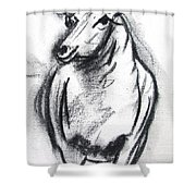 Sheep In Charcoal  Shower Curtain