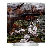 Sheep In The Mountains  Shower Curtain