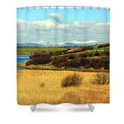 Sheep On The Hillside Shower Curtain