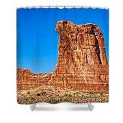 Sheep Rock Shower Curtain