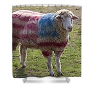 Sheep With American Flag Shower Curtain by Garry Gay