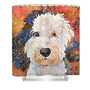 Sheepadoodle Shower Curtain