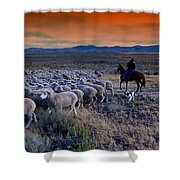 Sheepherder Life Shower Curtain