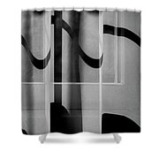 Sheer Starkness Shower Curtain