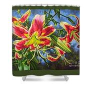 Sheherazade Lilies 1 Shower Curtain