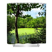 Sheldon Marsh Algae Pond Shower Curtain