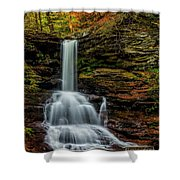 Sheldon Reynolds Falls Shower Curtain