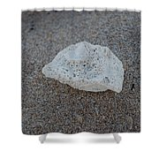 Shell And Sand Shower Curtain