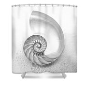 Shell Inside - Bw Shower Curtain