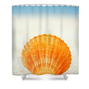Shell On Beach Shower Curtain