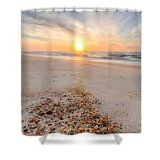 Shell Point Shower Curtain