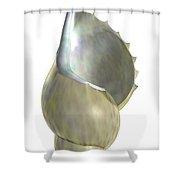 Shell Script Shower Curtain