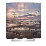 Shell Seeker Shower Curtain