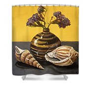 Shells And Stripes Shower Curtain