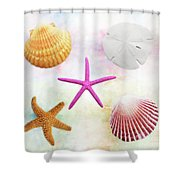 Shells Background Shower Curtain