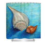 Shells In Blue Shower Curtain