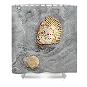 Shells On The Beach II Shower Curtain