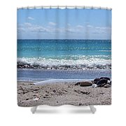 Shells On The Beach Shower Curtain