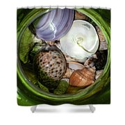 Shells Under Glass II Shower Curtain
