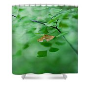Sheltered Shower Curtain