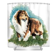 Sheltie Watch Shower Curtain by Kathleen Sepulveda