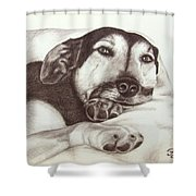 Shepherd Dog Frieda Shower Curtain