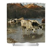 Shepherd With Cows On The Lake Shore Shower Curtain