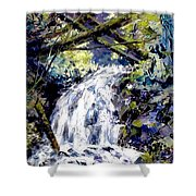 Shepherds Dell Falls Coumbia Gorge Or Shower Curtain
