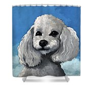Sherman - Poodle Pet Portrait Shower Curtain