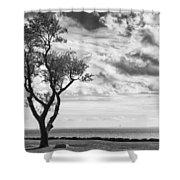 Sherwood Island Shower Curtain