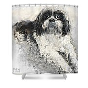 Shi-tzu Shower Curtain