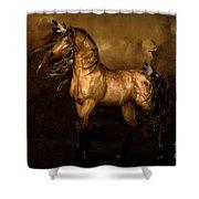 Shikoba Choctaw Horse Shower Curtain