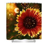 Shimer Of Fall Shower Curtain